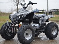 "ATV 250cc Warrior  10 ""Offroad"