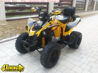 ATV Can Am DS 250 XC