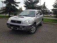 Hyundai Santa Fe DISEL 2003