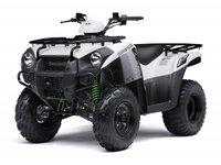 Kawasaki Brute Force 300
