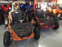 KXD Go Kart 80 Casca Bonus