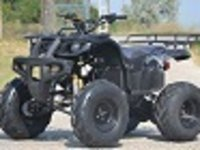 Model: ATV 250cc Grizzly  Garantie 12Luni