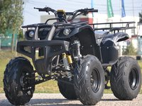 Model: ATV 250cc Grizzly   Speedy2015
