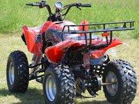 Model: ATV 250cc Warrior Garantie 12Luni