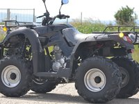 Model: ATV Rebel 250  Speedy2015