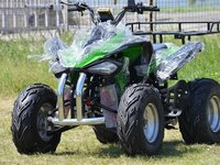 Model: ATV SpeedBirt 250   Speedy2015