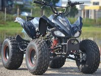 Model Nou: ATV Panzer 125 CC Master-King