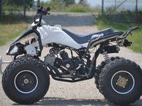 Model Nou: ATV Raptor P7 125 CC Strong->Monster