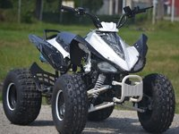 Model Nou: ATV Raptor P7 125 CC