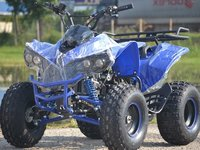 Model Nou:ATV  Renegade 125 CC  Speedy2015