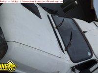 Pompa injectie Dacia papuc
