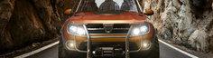 Volkswagen se recunoaste invins de Dacia la vanzari