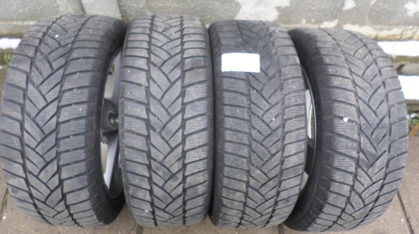 215 50 17 Iarna Dunlop