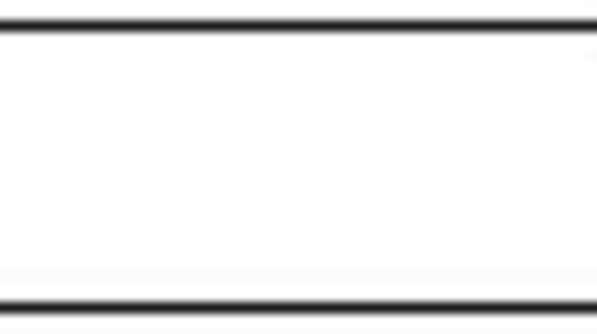 Amortizor capota MERCEDES-BENZ M-CLASS W163 TOPRAN 407 815