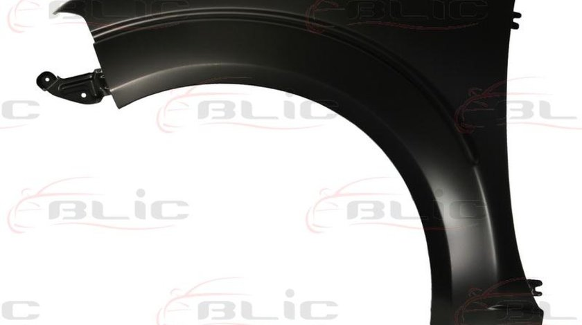 Aripa NISSAN NAVARA D40 Producator BLIC 6504-04-1677311P