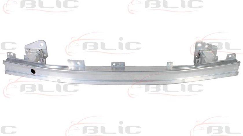 armatura bara RENAULT MEGANE III hatchback BZ0 Producator BLIC 5502-00-6043940P