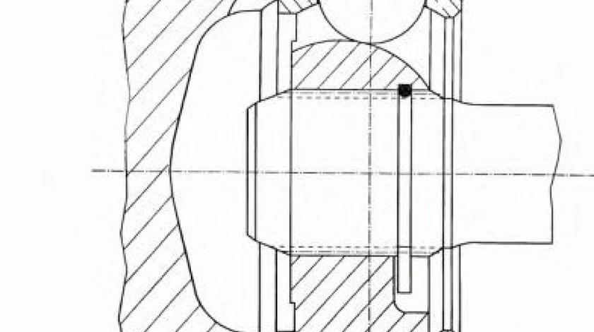 Articulatie, planetara FORD COURIER (F3L, F5L) (1991 - 1996) SPIDAN 23738 piesa NOUA