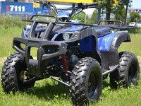 ATV 125 Mega Grizzly  Import Germania