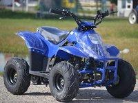 ATV Express Bigfoot 125cc Import Germania