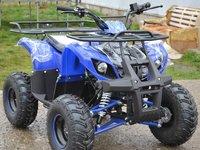ATV Express Torino 125cc Import Germania