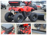 ATV Extreme T-REX 125cc Livrare rapida