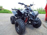 ATV Nou ReneGade Welons 125cc Bonus Casca