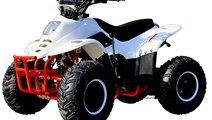 ATV QUAD MOTO 125cc noi Germania Transport 24h ori...