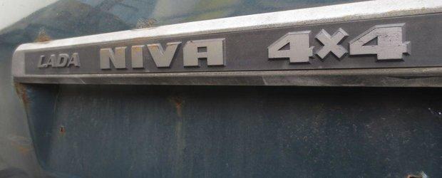 Aventurile unui dezmembrator auto: comoara din Lada Niva