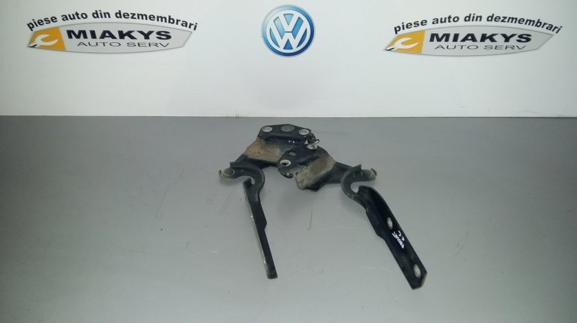 Balamale capota VW Passat CC