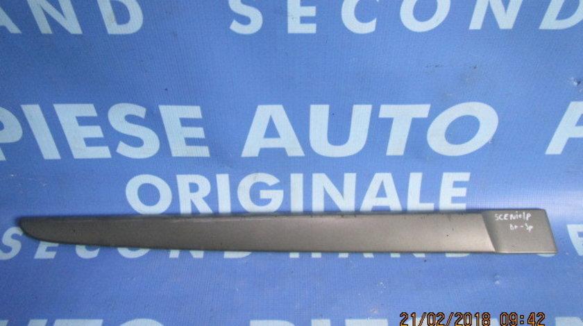 Bandou portiere Renault Scenic ; 8200136736