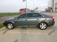 Bandouri portiere Audi A4 B7 B6 RS4 S4 Sline S-Line