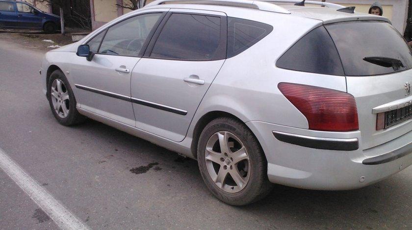 Bare Plafon Culoare Gri Peugeot 407 Sw