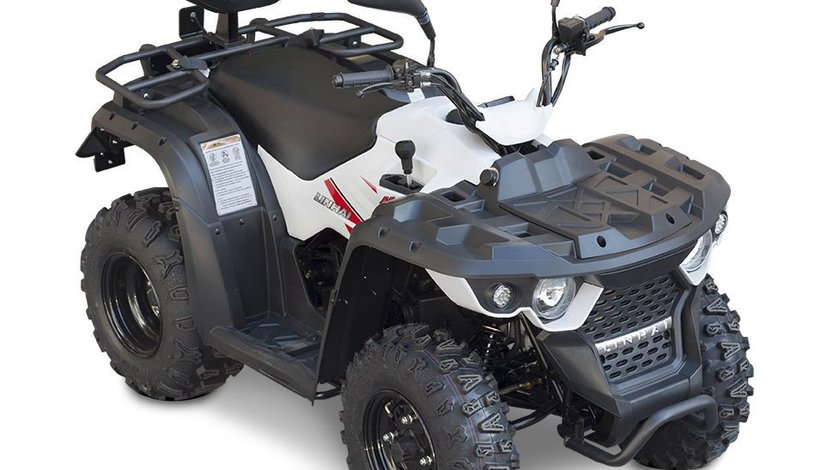 BEMI ATV Linhai M150-2x4BL model omologat T3b 1849 euro