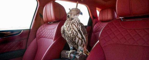 Bentley a facut un Bentayga special pentru cei care...vaneaza cu soimi. De ce? Pentru ca poate