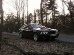 BMW 528 Bruneta
