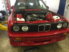 BMW M3 Ursulet parasit