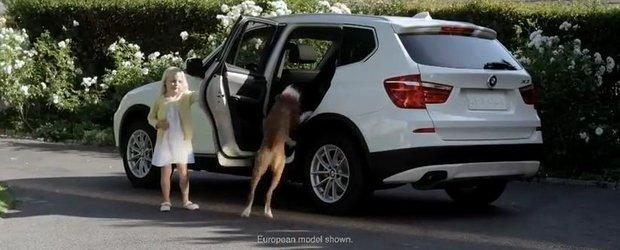 BMW X3 salveaza cainele de la castrare