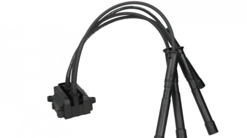 Bobina inductie Renault Symbol II (2008->) #2 0040104100