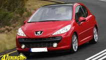 Broasca usa peugeot 207