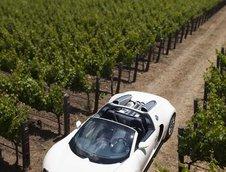 Bugatti Veyron 16.4 Grand Sport Roadster dezvaluit