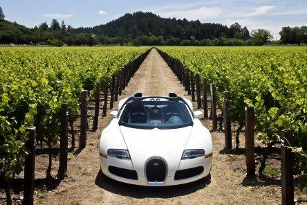 Bugatti Veyron Grand Sport - Galerie Foto