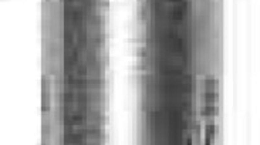 Bujie incandescenta MG EXPRESS caroserie BERU GN999
