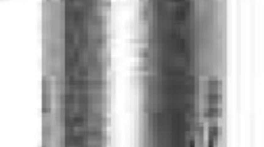 Bujie incandescenta ROVER 45 RT BERU GN999