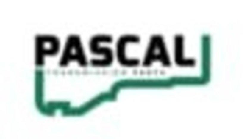 Burduf caseta directie RENAULT CLIO II Box (SB0/1/2_) PASCAL I6R010PC