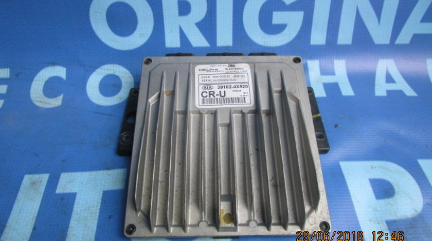 Calculator motor (incomplet) Kia Carnival 2.9crdi; 391024X520