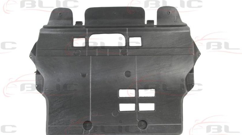 Carcasa de motor PEUGEOT 308 4A 4C Producator BLIC 6601-02-5519860P