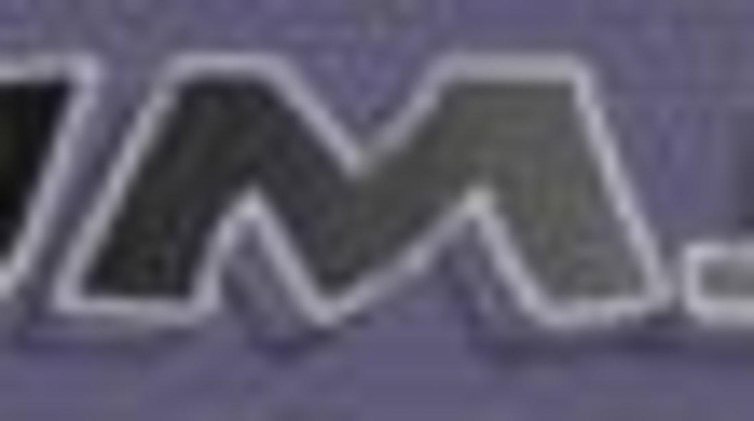 Catalizator MERCEDES-BENZ VITO / MIXTO Box (W639) JMJ JMJ1080361