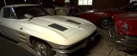 Cea mai tare colectie de masini americane rare tocmai a fost descoperita intr-o padure din Carolina