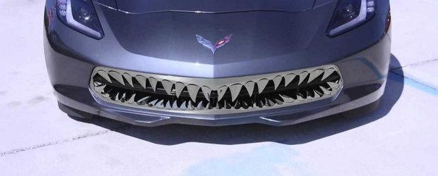 Cel mai inutil tuning pentru noul Corvette Stingray vine din... America, desigur