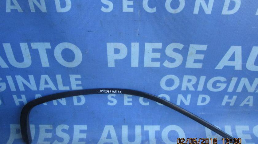 Cheder geam BMW E53 X5 (caroserie)